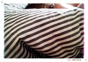 zebraeye